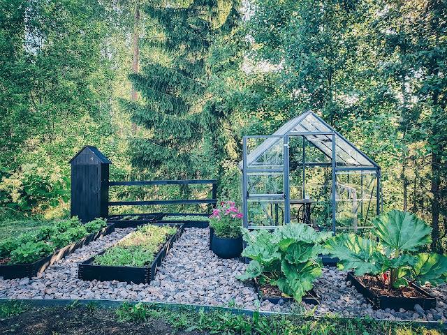 kasvulaatikko puutarha