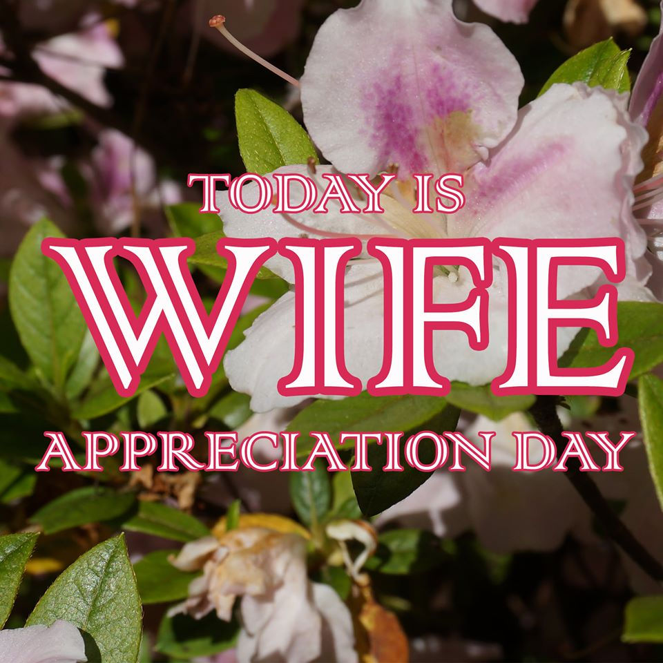 Wife Appreciation Day Wishes Lovely Pics