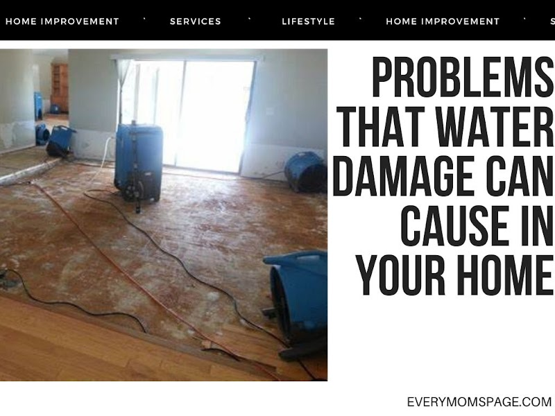 Problems That Water Damage Can Cause In Your Home