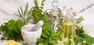 Image Obat herbal untuk penyakit kelamin wanita
