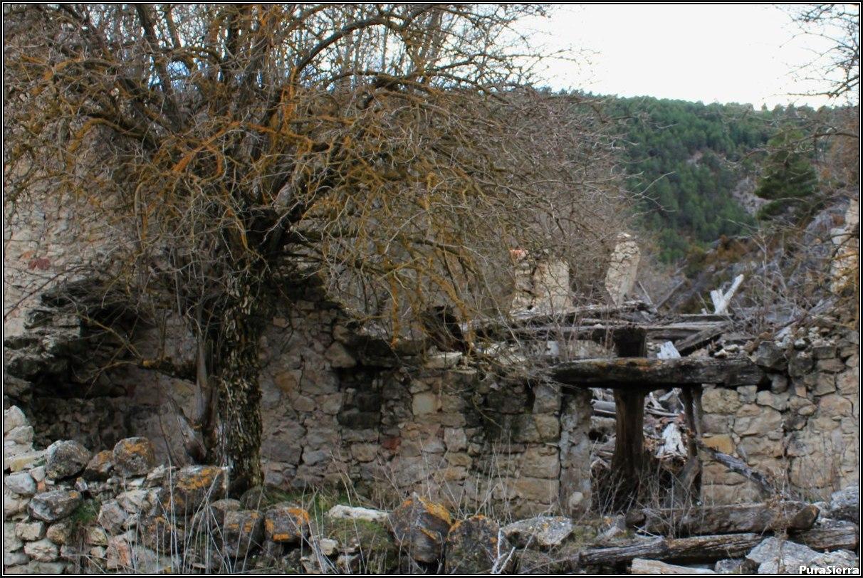 Rento De La Peraleja. Ruinas (9)