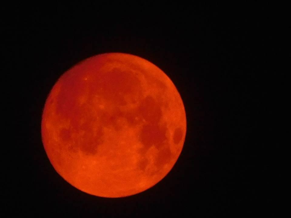 Forex orange or red news
