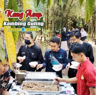 Jual Kambing Guling Soreang Bandung, jual kambing guling soreang, kambing guling soreang, kambing guling bandung, kambing guling,