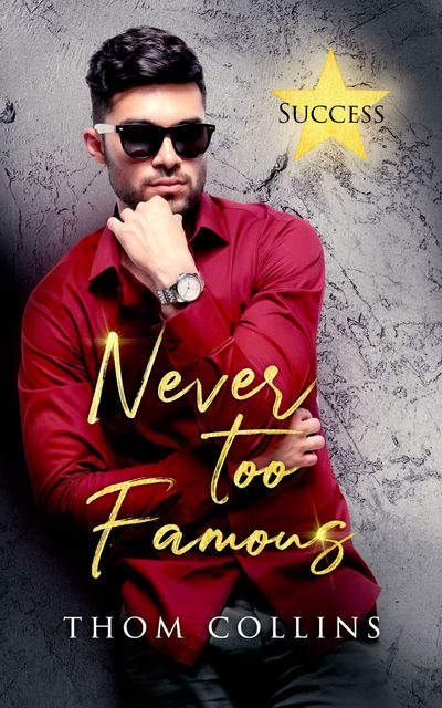 Never Too Famous cover
