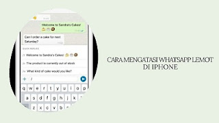 5 Cara Mengatasi WhatsApp Lemot di iPhone