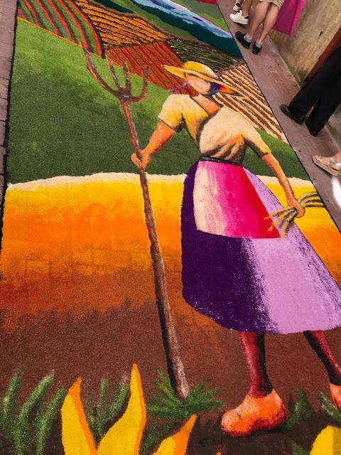 Alfombras de serrín Elche de la Sierra alfombra ganadora 2019