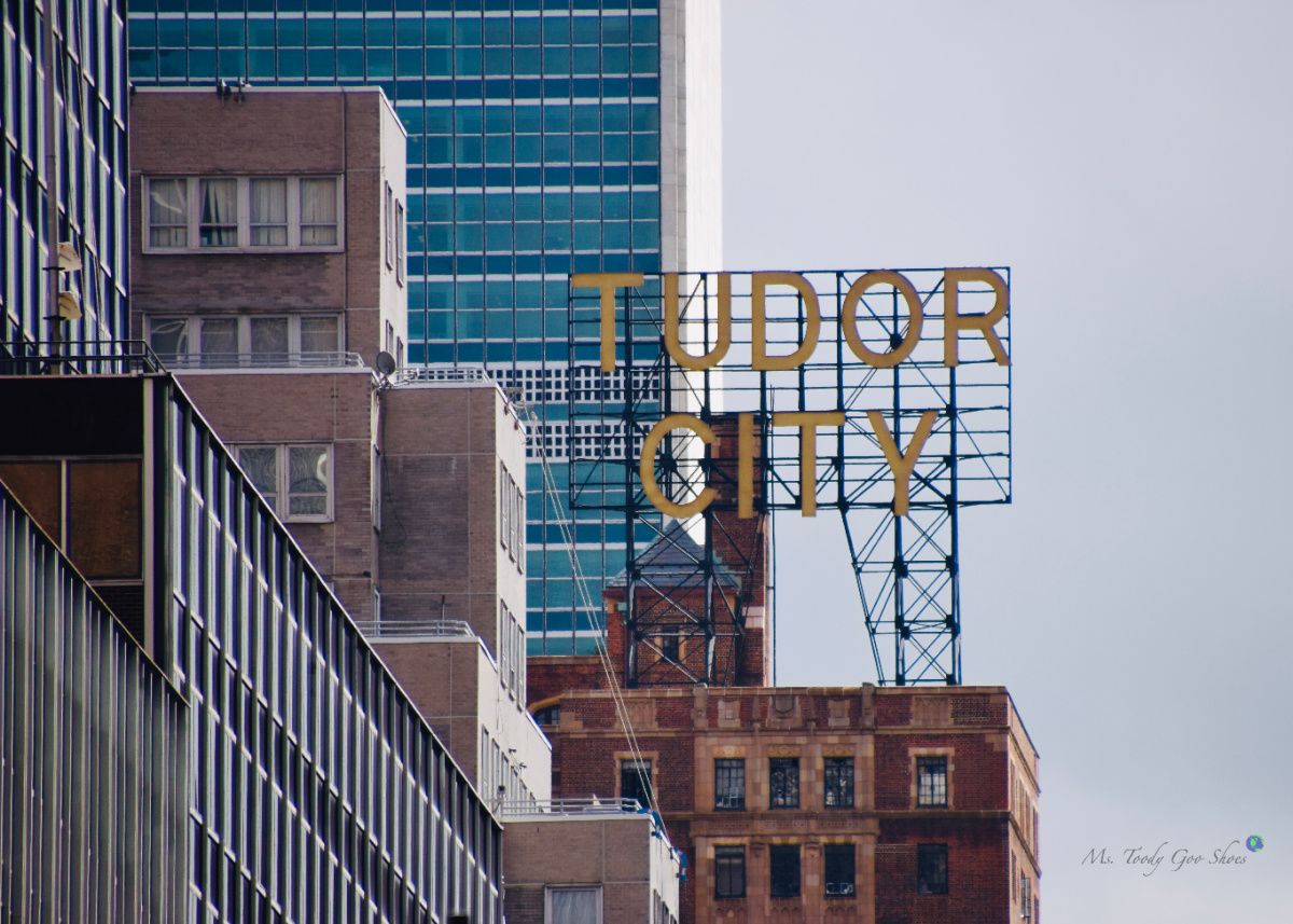 United Nations/Tudor City Grand Central Terminal NYC | Ms. Toody Goo Shoes