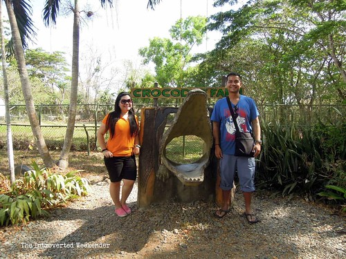 Puerto Princesa Travel Guide: exploring every corner of the Palawan Wildlife and Conservation Center