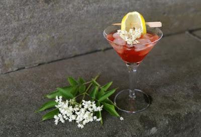 Holunderblüten Negroni