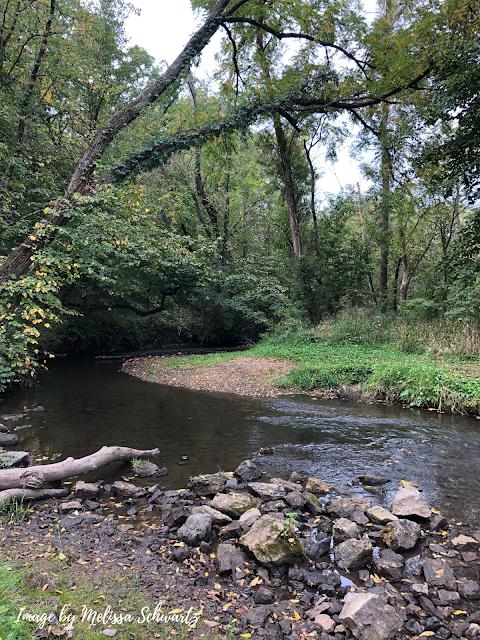 Marsh Creek crafts a striking scene at Robert O Cook Memorial Arboretum in Janesville, Illinois