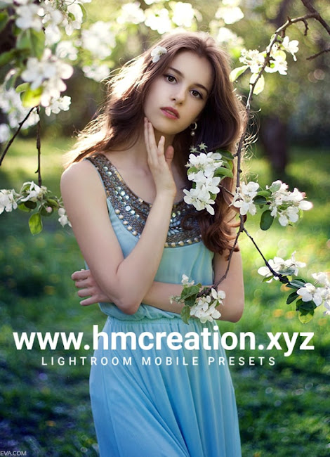 Color-grading-Lightroom-mobile-presets-free-download