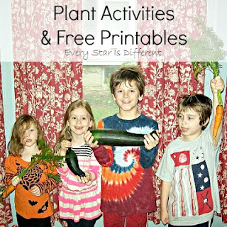 Montessori-inspired plant learning activities and free printables.