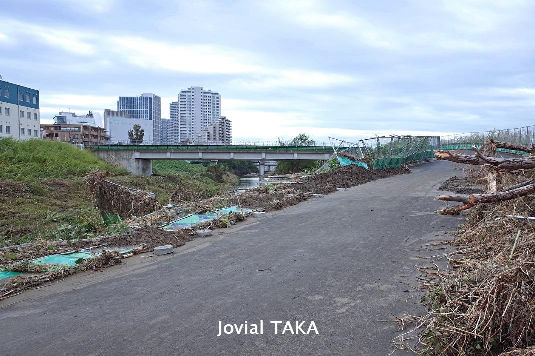 反対 二子 玉川 堤防 二子玉川地区の河川氾濫は人災か? 堤防建設問題を反対派と国交省に直撃《台風19号水害》