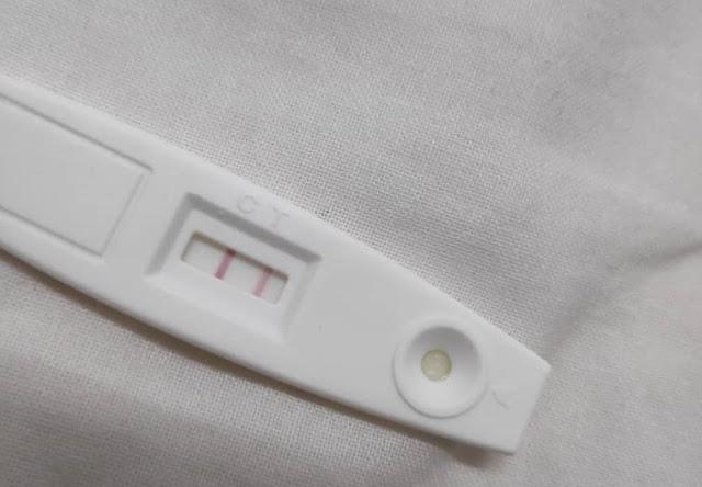 Pregnancy Journey - Trimester Pertama Kehamilan