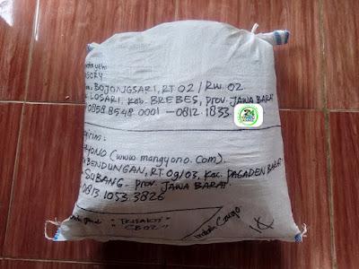 Benih pesana    DASORI Brebes, Jateng.   (Sesudah Packing)