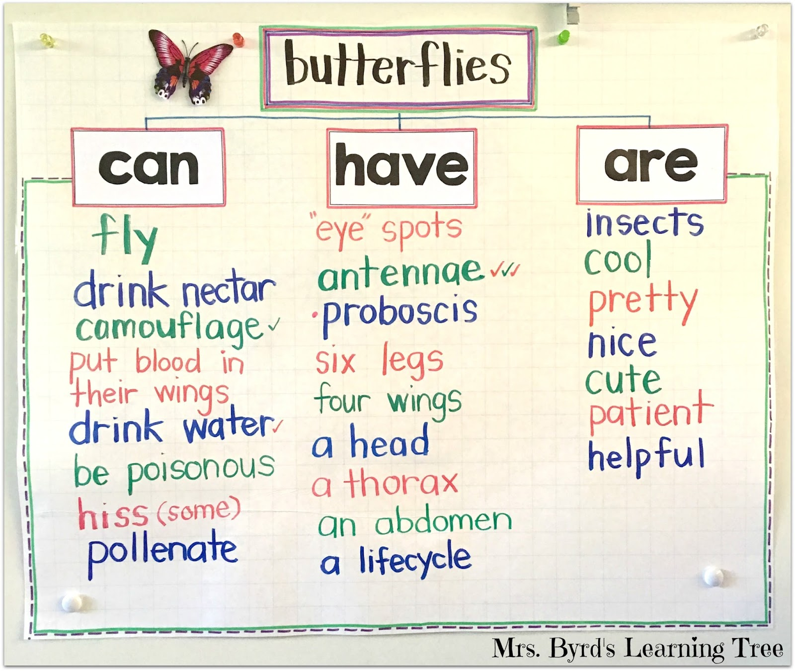 butterfly essay children These fun butterfly facts for kids are a perfect way to teach children about  caterpillars and butterflies learn about the butterfly lifecycle,.