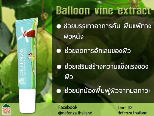 Balloon Vine Extract