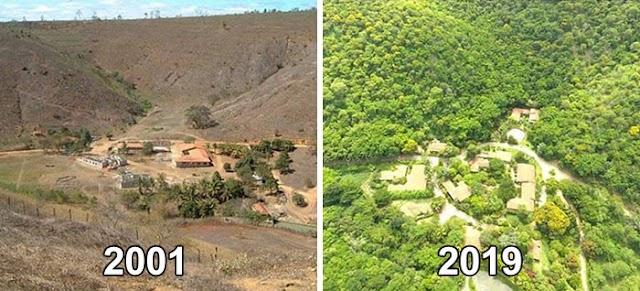 Φύτευσαν 2 εκατομμύρια δέντρα σε 20 χρόνια και μεταμόρφωσαν την ξερή γη σε επίγειο παράδεισο