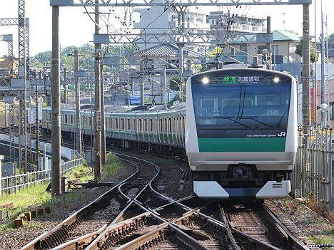【ダイヤ改正で2本だけ新設!】E233系の特急 武蔵浦和行き