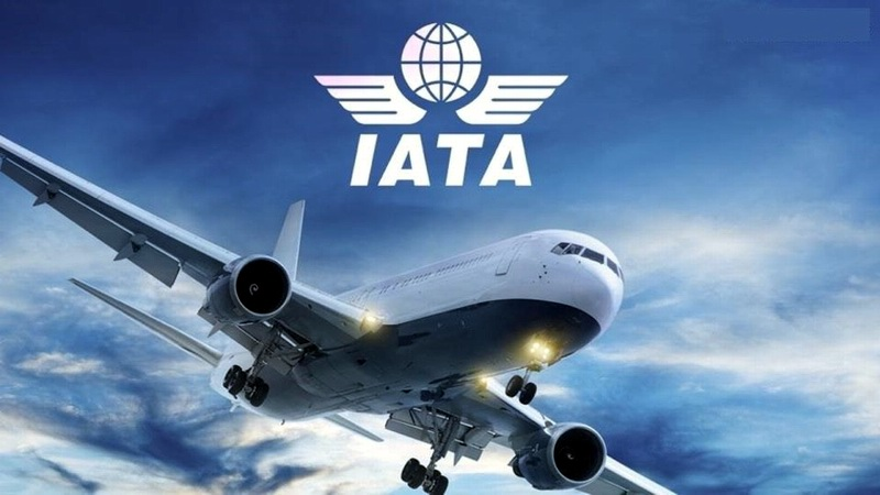 الإتحاد الدولي للنقل الجوي IATA الإياتا