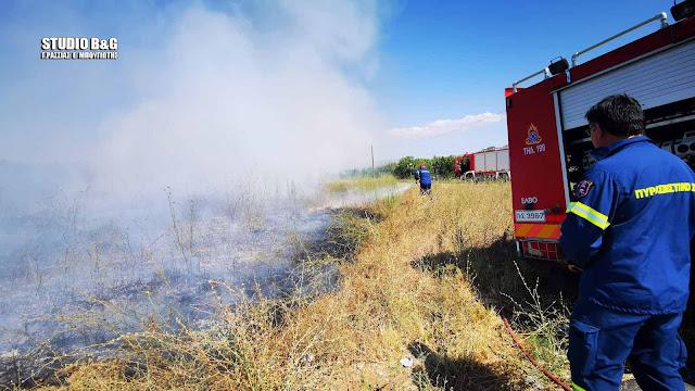 Πυρκαγιά εκδηλώθηκε στο Ναύπλιο (βίντεο)