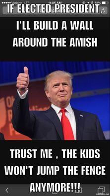 Wall%2Baround%2BAmish true amish stories