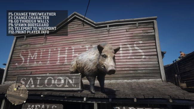 TRAINER MODE IN RDR2