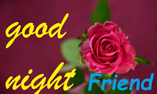 good night red rose for friends