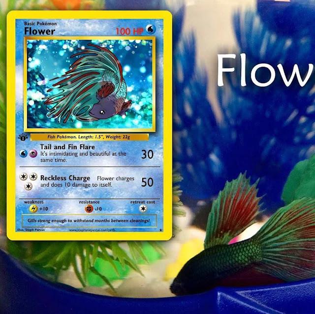 artista-convierte-mascotas-en-Pokémones