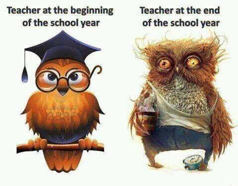 Super Onderwijs en zo voort ..: 1313. Einde schooljaar : Werkboekje &EV05