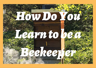 Starting out in beekeeping