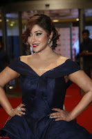 Payal Ghosh aka Harika in Dark Blue Deep Neck Sleeveless Gown at 64th Jio Filmfare Awards South 2017 ~  Exclusive 106.JPG