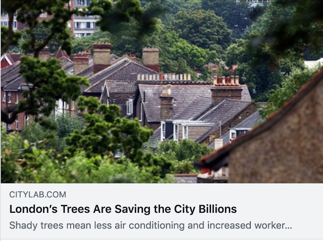 https://www.citylab.com/environment/2020/03/london-trees-economic-benefits-urban-cooling-carbon/607525/