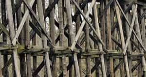 Mengawetkan kayu merupakan kegiatan memasukkan bahan racun ke dalam kayu untuk melindungi kayu dari serangan makhluk hidup perusak kayu yang berasal dari luar seprti serangga, jamur, dan binatang laut (Dumanauw, 1990). Cara-cara mengawetkan kayu menurut Dumanauw (1990) terdiri dari 5 cara yaitu sebagai berikut.