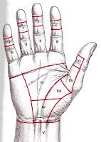 Переломы фаланг пальцев кисти: лечение, реабилитация и полное восстановление