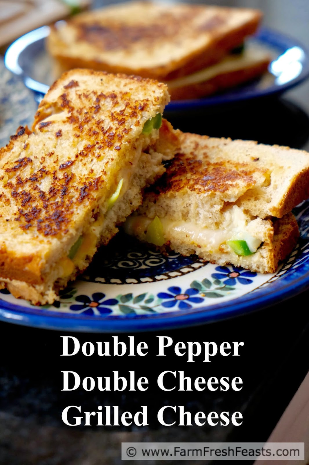 http://www.farmfreshfeasts.com/2015/04/double-pepper-double-cheese-grilled.html