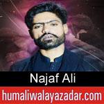 https://humaliwalaazadar.blogspot.com/2019/08/najaf-ali-nohay-2020.html