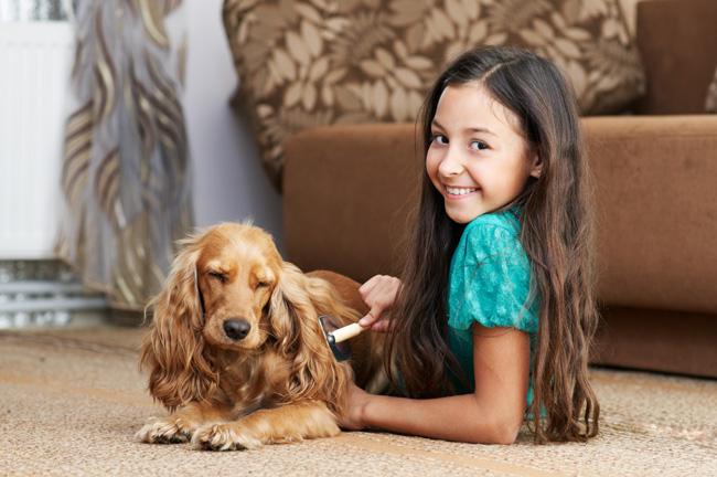 Grzebień dla psów długowłosych