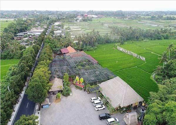 21 Tempat Wisata Di Gianyar Bali Terpopuler Terbaik Yang Wajib Dikunjungi Kepengen Wisata