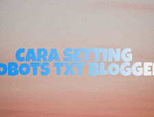 Cara Setting Robots txt Untuk Blogger