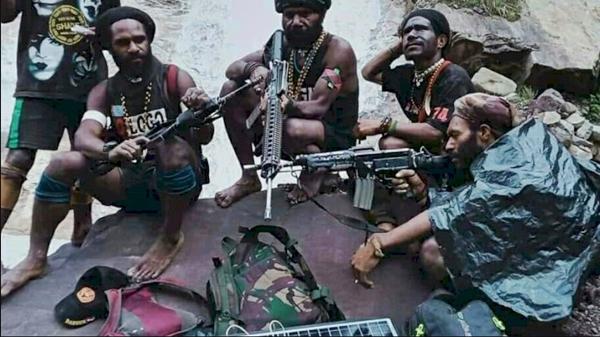 HNW: Koopssus TNI Harusnya Fokus ke OPM, Buktikan Kehebatan di Sana