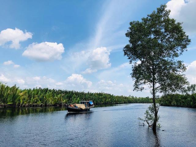 pemandangan-wisata-mangrove-pekanbaru