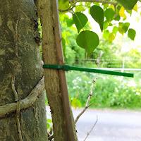 geocaching hint kabelbinder tiewrap geocaches