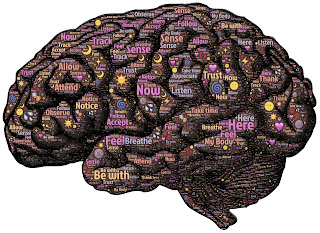 Amazing Facts in Hindi About Brain