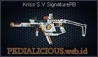 Kriss S.V SignaturePB