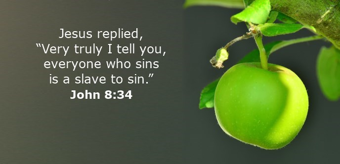 """Jesus replied, """"Very truly I tell you, everyone who sins is a slave to sin."""""""
