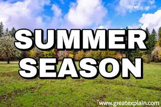Essay on Summer Season for Students | 10 Lines on Summer Season