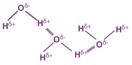 الروابط الهيدروجينية في الماء