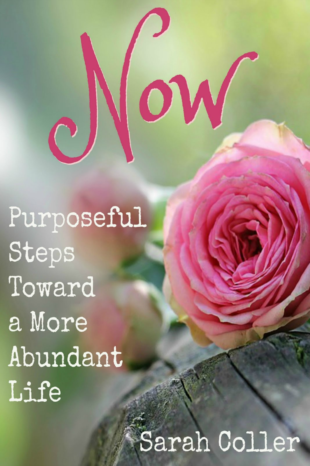 My Devotional is a Perfect Gift for Mothers, Daughters, Grandmothers, and Friends!