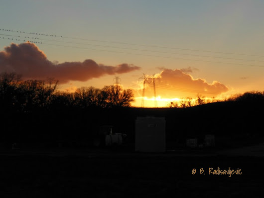 Photos of Sundown at Steinbeck Winery